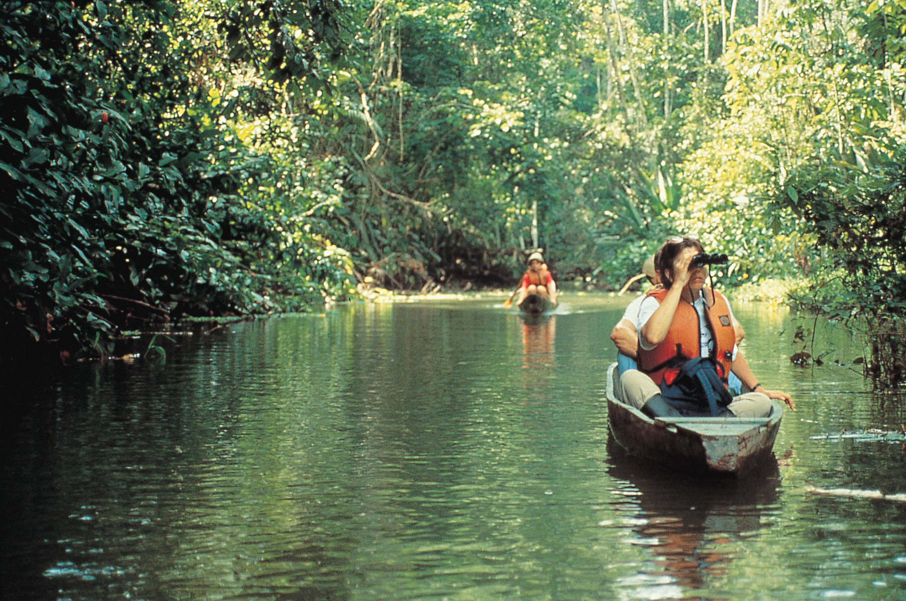 Nature tour in Ecuador's Amazon Basin